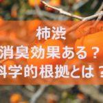 柿渋は本当に体臭に効果があるのか?専門家による科学的根拠で証明!